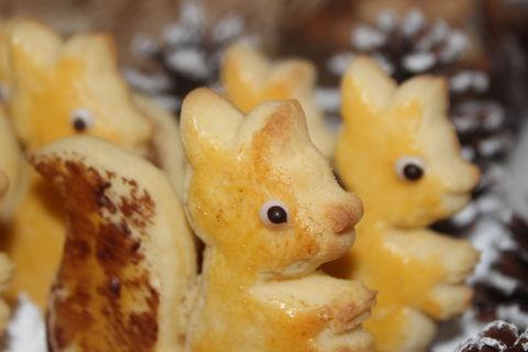 legen eichhörnchen eier